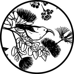 Iiwi Lehua Icon on Transparent Background