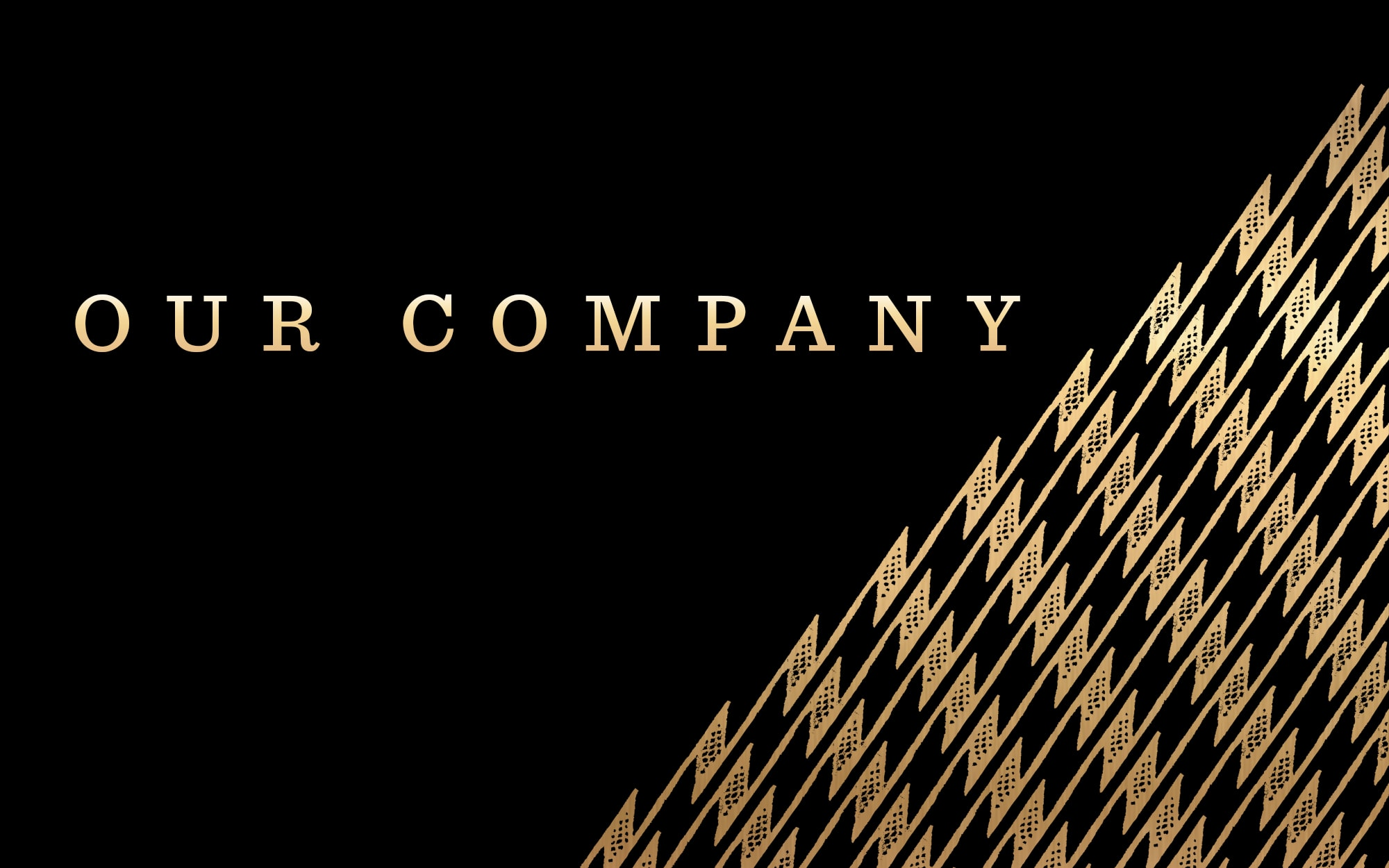 Our Company Banner
