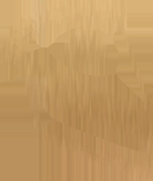 Gold Dessert Icon on Transparent Background